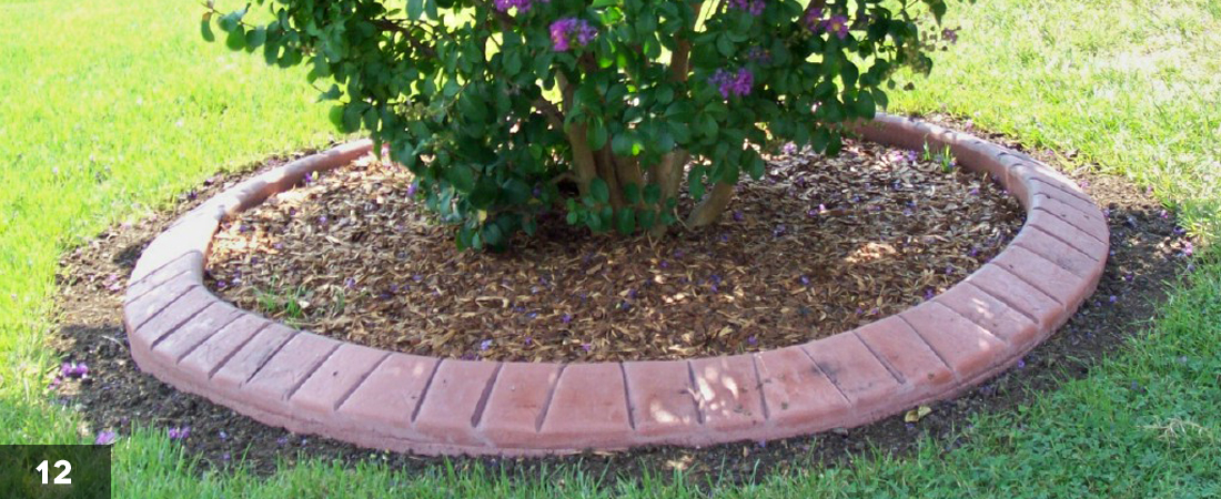 Decorative Landscape Border Bush